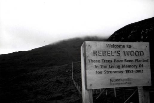 rebel-wood
